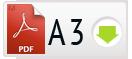 Скачать PDF A3