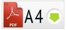 Cкачать PDF A4